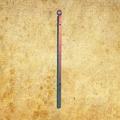 Poteau de cloture Linear à sceller 1150mm